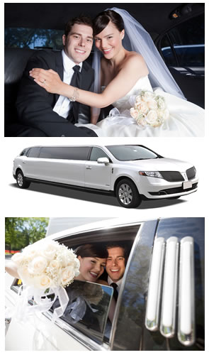 Wedding Transportation in the Lehigh Valley, PA